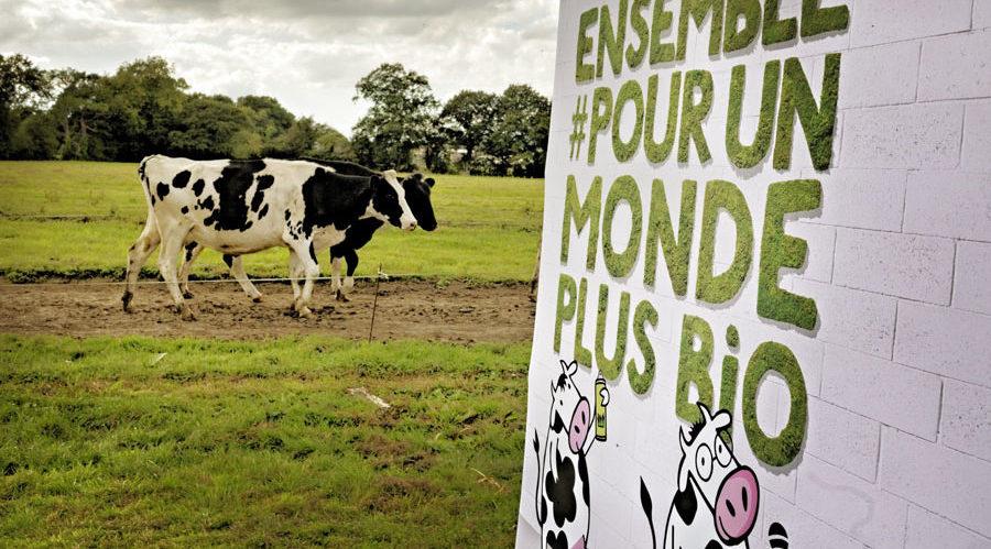 Evenement Les 2 Vaches dans un champ : ensemble pour un monde plus bio